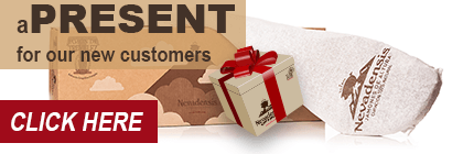 Click to receive a gift with your first order of Ham from Trevélez